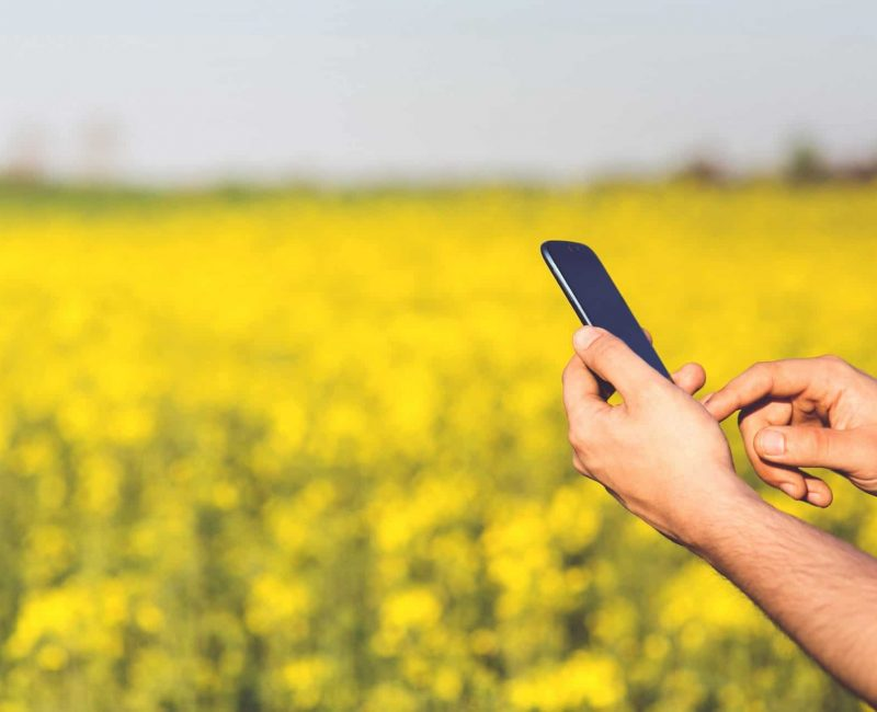 smart-agriculture-malaysia-farming